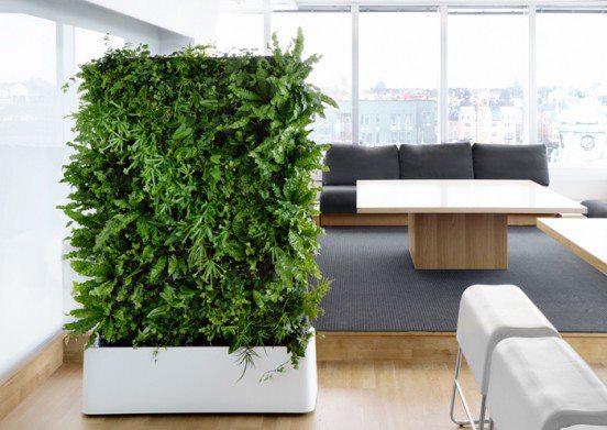 Parete Verde Ufficio : Il verde in ufficio riganelli