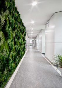 verde verticale in ufficio - riganelli