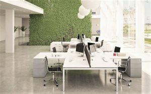 novità arredo 2021 tavolo scrivania operativo per ufficio con verde verticale - riganelli