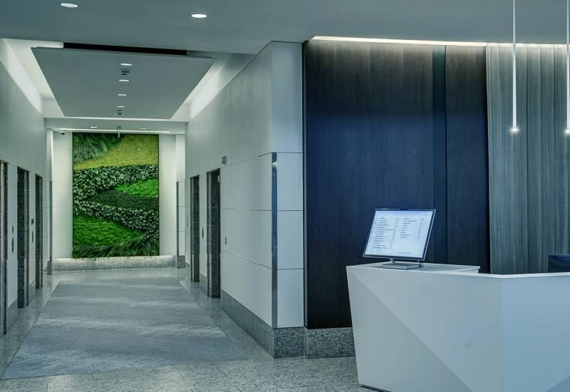 parete verde verticale bonetti - riganelli rivenditore
