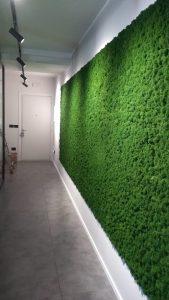 verde stabilizzato applicato a parete interna uffici -riganelli